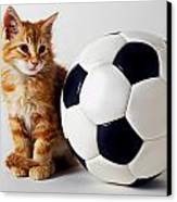 Orange And White Kitten With Soccor Ball Canvas Print