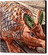 Orangeadillo Canvas Print by Ken Williams