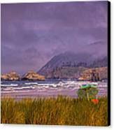 Oregon Seascape Canvas Print by David Patterson