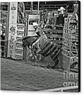 Out Of The Chute Canvas Print by Shawn Naranjo
