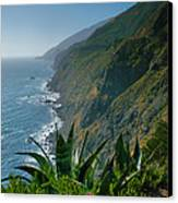 Pacific Coast Shoreline IIi Canvas Print by Steven Ainsworth