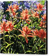 Paintbrushes Wildflowers Rainier National Park Canvas Print
