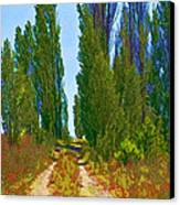 Paradise Road Canvas Print