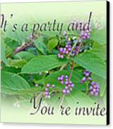 Party Invitation - General - American Beautyberry Shrub Canvas Print by Mother Nature
