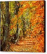 Pathway Through Autumn Woods Canvas Print by Cheryl Davis