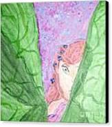 Peeking Fairy  Canvas Print by Elizabeth Arthur