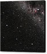 Pegasus Constellation Canvas Print
