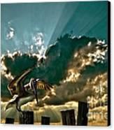 Pelican Sky Canvas Print