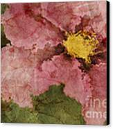 Petaline - Ar01bt05 Canvas Print by Variance Collections