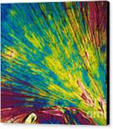 Phenylalanine Canvas Print by Michael W. Davidson