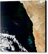 Phytoplankton Bloom Off Nambia Canvas Print