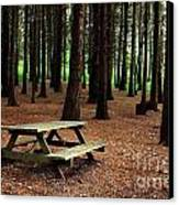 Picnic Table Canvas Print by Carlos Caetano