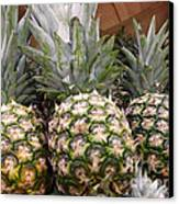 Pineapples Canvas Print by Methune Hively
