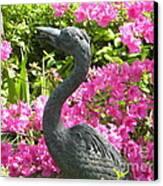 Pinkness Of A Bird Canvas Print by Kimberlee Weisker