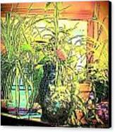Plants Canvas Print by YoMamaBird Rhonda