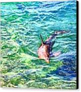 Playful Dolphin Canvas Print by Jose Lopez