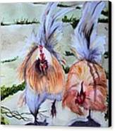 Plump Chickens Canvas Print by Myrna Migala
