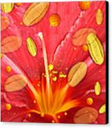Pollen And Flower Canvas Print