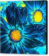 Pop Art Daisies 7 Canvas Print by Amy Vangsgard