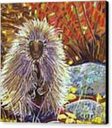 Porcupine On The Trail Canvas Print by Harriet Peck Taylor