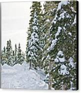 Powdery Snow Path Canvas Print