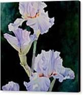 Pretty In Purple Canvas Print by Bobbi Price