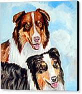 Pretty Pair - Australian Shepherd Canvas Print by Lyn Cook