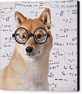Professor Dog Canvas Print