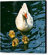 Proud Mother  Canvas Print