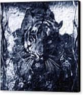 Prowler Canvas Print