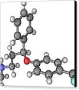 Prozac Antidepressant Molecule Canvas Print by Laguna Design