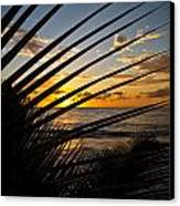 Puerto Rican Sunset IIi Canvas Print by Tim Fitzwater