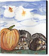 Pumpkin And Puppies Canvas Print by Pamela Wilson