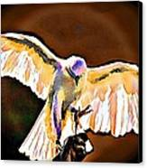 Pure Whtie Raptor Canvas Print by Carrie OBrien Sibley