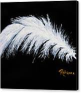 Purity Canvas Print by Judy M Watts-Rohanna