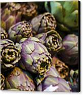 Purple Artichokes At The Market Canvas Print by Heather Applegate