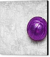 Purple Ball Cat Toy Canvas Print