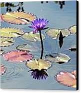 Purple Mirror Canvas Print