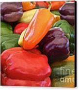 Rainbow Bells Canvas Print by Susan Herber