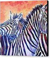 Rainbow Zebras Canvas Print by Diana Shively