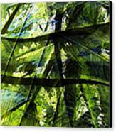 Rainforest Abstract Canvas Print by Bonnie Bruno