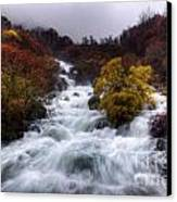 Rapid Waters Canvas Print by Carlos Caetano