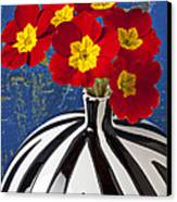Red And Yellow Primrose Canvas Print by Garry Gay