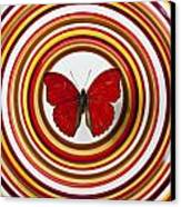 Red Butterfly On Plate With Many Circles Canvas Print by Garry Gay