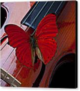 Red Butterfly On Violin Canvas Print by Garry Gay