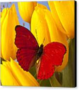 Red Butterful On Yellow Tulips Canvas Print by Garry Gay
