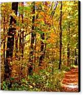 Red Run Trail Canvas Print by Ed Smith