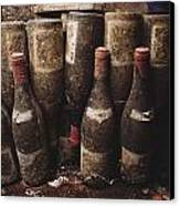 Red Wine Bottles, Covered With Mold Canvas Print by James L. Stanfield