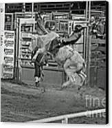Ride 'em Cowboy Canvas Print by Shawn Naranjo