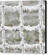 Rime Covered Fence Canvas Print by Christine Till